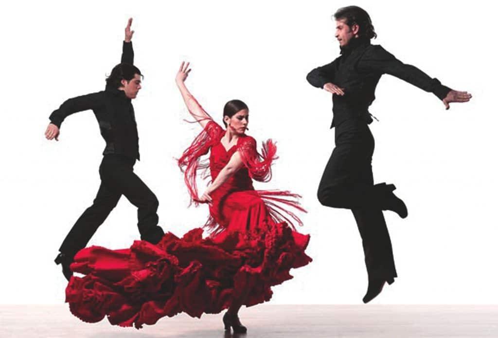 cours particuliers de flamenco dance 1024x694 - Cours particuliers de danse Flamenco